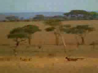UnoDeBilbaoEnAfrica