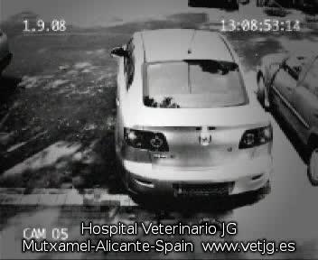 coche_nuevo
